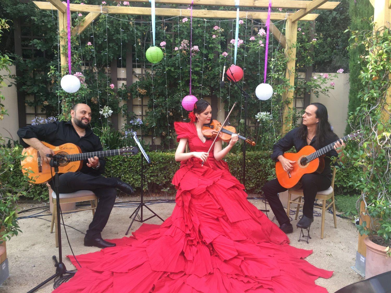 Música en directo - Trio flamenco de cuerda