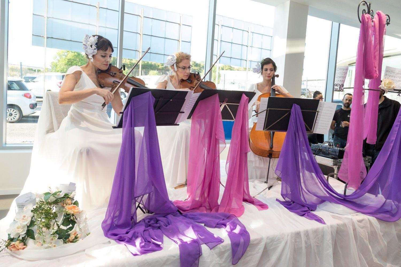 Música en directo - Violines clásicos